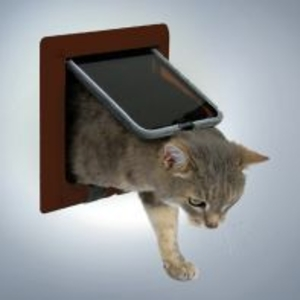кошачья дверца туалетная, с установкой